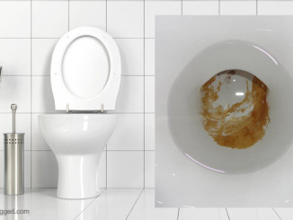 urine scale in a toilet - how to remove limescale